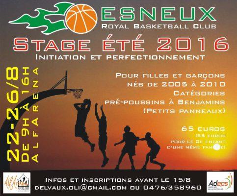 affiche stage 22-26-2016