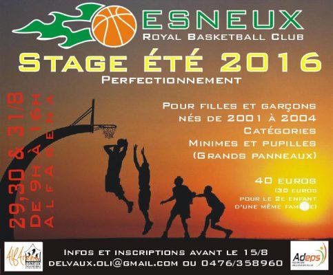 affiche stage 29-31-2016